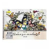 Альбом для рисования Апельсин АП-П-120-20 Цветные бабочки, 20 листов
