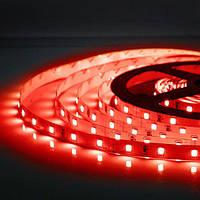5м Світлодіодна LED стрічка 60smd 2835 12v Червона, негерметична