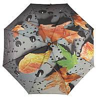 Женский красивый прочный зонтик полуавтомат  Fiaba art. 788, фото 1