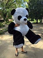 Панда 200 см Мягкая игрушка. Большая игрушка.