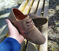 Кожаные туфли макасины перфорация Lord, фото 1