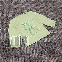 Детская кофточка р 68 3-5 мес футболка с длинным рукавом трикотажный свитшот джемпер на мальчика 6058 Зелёный