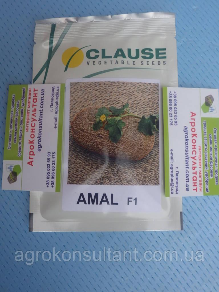 Семена дыни Амал F1 (Агропак) — 1000 семян, ранняя (65-70 дней), овальная, тип Ананас