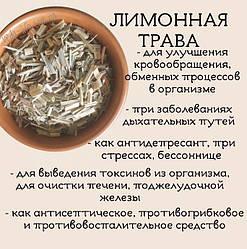 Лечебные свойства Лимонной травы/Лемонграсса