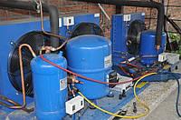 Холодильный агрегат для хранения, охлаждения и заморозки рыбы