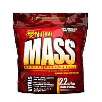 Mass - 2,2kg - Mutant