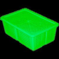 Ящик з кришкою перфорований 350х235х130 салатовий