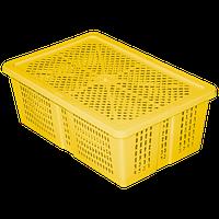 Ящик з кришкою перфорований 350х235х130 жовтий