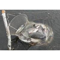 Металлический рыбацкий садок (35 см), фото 1