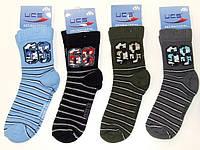 UCS Антибактериальные носочки «Полоска», фото 1