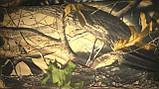 """Костюм """"Охота-рыбалка"""" зимний мембрана гладкая, фото 3"""