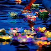 Водные фонарики, фото 1