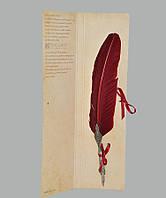 Перо гусиное для каллиграфии Dallaiti Piu02 бордо