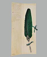 Перо гусиное для каллиграфии Dallaiti Piu02 зеленое