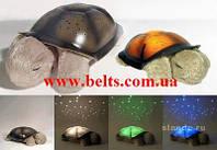 Светильник звездное небо музыкальная черепаха с USB шнуром, Music turtle lamp, фото 1
