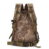 Рюкзак тактический штурмовой Molle Assault B01 40 л, олива, фото 3