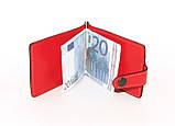 Зажим для денег DNK Euro Clamp col.H, фото 3