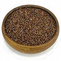 Пшеница Чернобровая натуральная 0,25кг. без ГМО