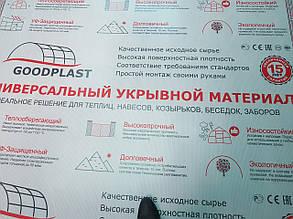Сотовый поликарбонат GOOD PLAST  прозрачный 6 мм (8 лет) за м2