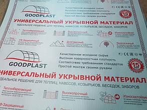 Поликарбонат прозрачный GOOD PLAST 6 мм (лист 6 х2,1 м2)