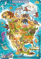 """Большой детский пазл картина с рамкой """"Животные Северной Америки"""" DoDo (на планшете)"""