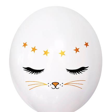 "0481 Шар 12"" (30 см) Котик на белом (BelBal), фото 2"