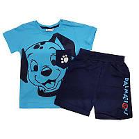 Костюм для мальчика 68-92 (6-24 месяцев) арт.19113 футболка + шорты, 2 цвета