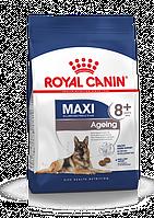 Royal Canin (Роял Канін) Maxi Ageing 8+ - корм для собак великих порід старше 8 років (15 кг)