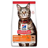 Hills (Хиллс) Adult Optimal Care сухой корм для кошек с ягненком (10 кг)