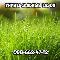 Газон (семена) Универсальный , Газонная трава , Урожай 2019