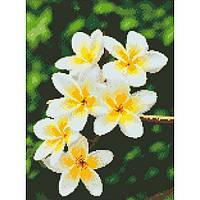 """Алмазная мозаика """"Гавайский цветок""""  30*40см AM6105"""