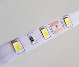 Світлодіодна стрічка 5630-60led 10мм, IP20 18-20lm, біла, фото 2