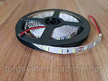 Світлодіодна стрічка 5630-60led 10мм, IP20 18-20lm, біла