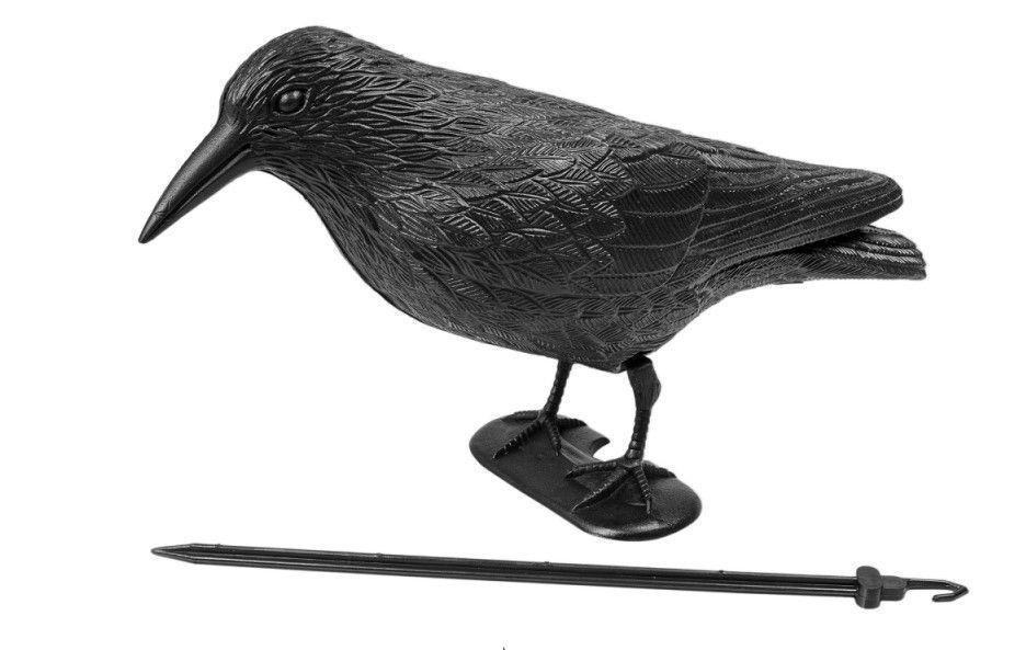 Ворон для отпугивания голубей Chomik