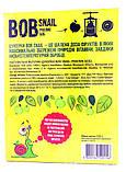 Пастила Яблоко  Равлик Боб без сахара Bob Snail , 120 г, в упаковке 12 конфет в виде спирали, фото 2