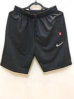 """Шорты мужские спортивные NIKE размеры 48-56 (4 цв) """"ZERO"""" купить недорого от прямого поставщика, фото 1"""