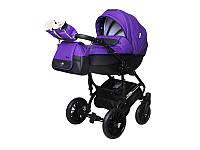 Детская коляска 2 в 1 Angelina Phaeton Black Star Comfort фиолетовая color 17