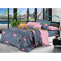 Семейное постельное белье Royal Dreams добрый фламинго