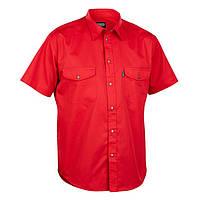 Корпоративные рубашки с коротким рукавом