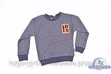 Батник для мальчика трикотажный (цв.серый/синий)  REMI 284 Рост:98,104