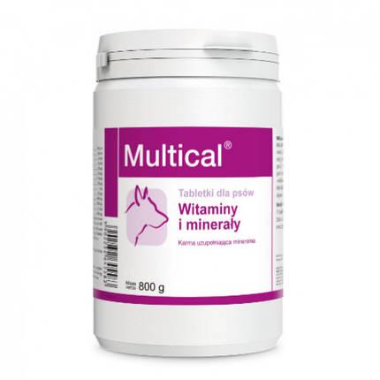 Пищевая добавка Dolfos Multical для повышения физиологического развития для собак, 800 г, фото 2