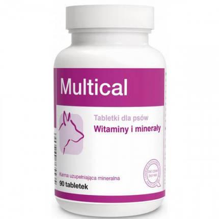 Пищевая добавка Dolfos Multical для повышения физиологического развития для собак, 90 табл., фото 2
