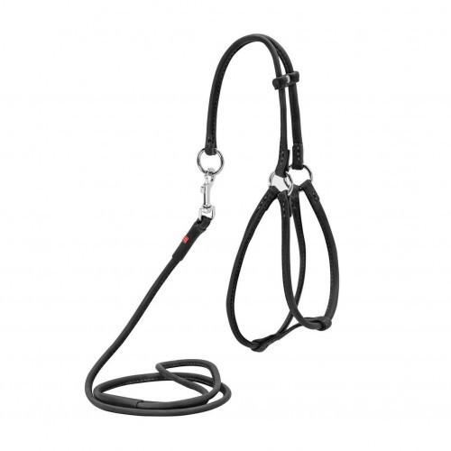 Шлея-поводок круглая Waudog Soft №1 для кошек и мелких собак, 6мм x 105см, черная