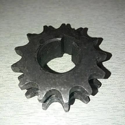 Звезда двухрядная мототрактора Z-13 под ось 24 мм, фото 2