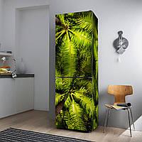"""Виниловая наклейка на холодильник """"Листья пальм""""., фото 1"""