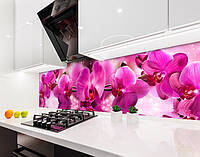 Кухонный фартук Пышные розовые Орхидеи (виниловая самоклеющаяся пленка для кухни, скинали) цветы, розовый, 600*3000 мм