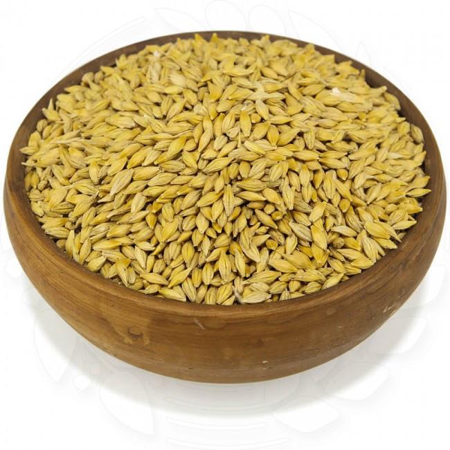 Ячмень органический неочищенный 20 кг.  без ГМО