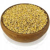 Ячмень органический неочищенный 100 кг. сертифицированные без ГМО