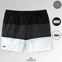 Летние мужские шорты для пляжа/купания полосатые лакост (Lacoste), реплика