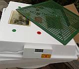 Инкубатор Квочка МИ-30-1-Э (тэн), фото 2